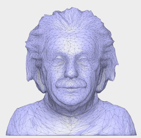 Einstein zjednodušená Mesh síť