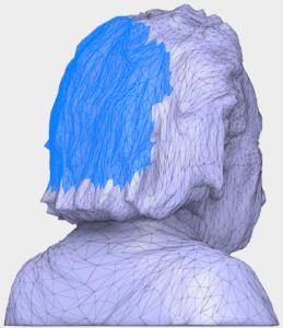 Einstein zjednoduseni mesh site